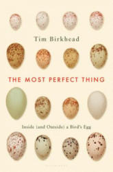 The Most Perfect Thing: Inside (ISBN: 9781632863690)