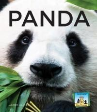 Anders Hanson - Panda - Anders Hanson (ISBN: 9781624030604)
