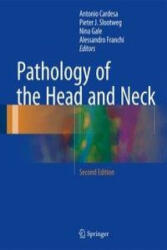 Pathology of the Head and Neck (ISBN: 9783662496701)