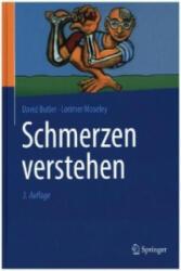 Schmerzen verstehen (ISBN: 9783662486573)