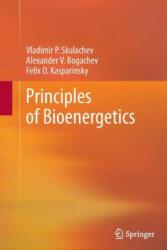 Principles of Bioenergetics (ISBN: 9783642435829)