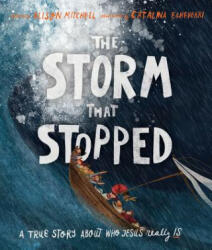 Storm That Stopped (ISBN: 9781910307960)