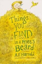 Things You Find in a Poet's Beard (ISBN: 9781909136618)