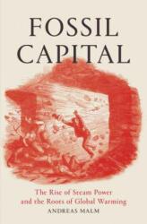 Fossil Capital (ISBN: 9781784781293)