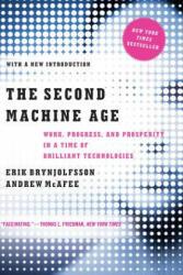 Second Machine Age (2016)