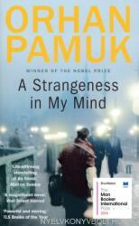 Strangeness in My Mind (2016)