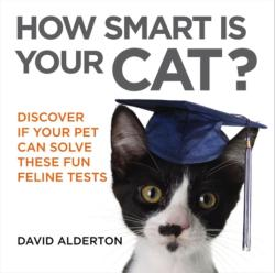 How Smart is Your Cat? - Discover If Your Pet Can Solve These Fun Feline Tests (2015)