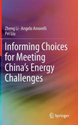 Informing Choices for Meeting China's Energy Challenges (ISBN: 9789811023521)