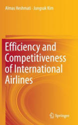 Efficiency and Competitiveness of International Airlines (ISBN: 9789811010156)