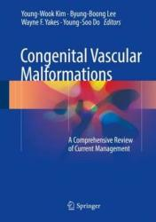 Congenital Vascular Malformations - Young-Wook Kim, Byung-Boong Lee, Wayne F. Yakes, Young-Soo Do (ISBN: 9783662467084)
