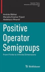 Positive Operator Semigroups - From Finite to Infinite Dimensions (ISBN: 9783319428116)