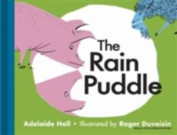 Rain Puddle (ISBN: 9781851244690)