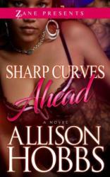 Sharp Curves Ahead (ISBN: 9781593096762)