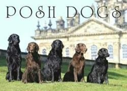 Posh Dogs - Anna Press Black, Pimpernel Press, Anna Black (2016)