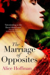Marriage of Opposites (2016)