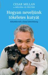 Hogyan neveljünk tökéletes kutyát (2011)