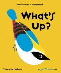 What's Up? (2016)