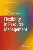 Flexibility in Resource Management (ISBN: 9789811048876)
