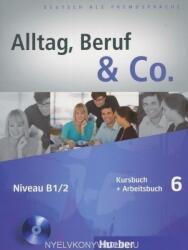 Kursbuch + Arbeitsbuch, m. Audio-CD zum Arbeitsbuch - Norbert Becker, Jörg Braunert (ISBN: 9783196015904)