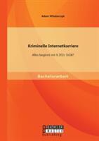 Kriminelle Internetkarriere - Alles Beginnt Mit 202c Stgb? (ISBN: 9783958202702)