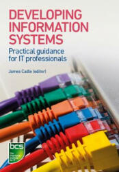 Developing Information Systems (ISBN: 9781780172453)