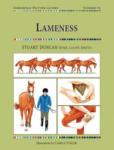 Lameness (2007)