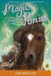 Magic Ponies: Pony Camp (2009)