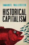 Historical Capitalism with Capitalist Civilization: How Finance Is Failing Us (2011)