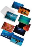 David Doubilet: Water Light Time Postcards (2002)