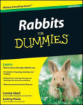 Rabbits for Dummies: Building an Effective Incident Management Plan (ISBN: 9780470430644)