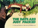 The Days Are Just Packed (2009)