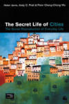 The Secret Life of Cities: The Social Reproduction of Everyday Life (2003)