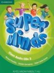 Super Minds Level 2 Class Audio CDs (ISBN: 9781107674066)
