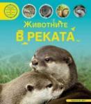 Животните в реката (2013)