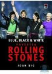 Povestea Rolling Stones - Ioan Big (ISBN: 9789737171016)