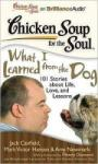 Chicken Soup for the Soul: What I Learned from the Dog: 101 Stories about Life, Love, and Lessons (2011)