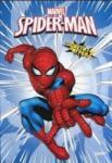 Spider-Man: Оцвети и играй #2 (2013)