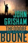Theodore Boone: The Activist (2014)