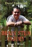 Brain Stem Injury: How I Won (2012)
