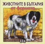 Животните в България от фермата (2007)