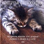 Кошачья философия (2005)