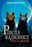 PISICILE RAZBOINICE. FOC SI GHEATA (2014)