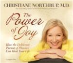 The Power of Joy (ISBN: 9781401923082)