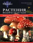 Растения. водорасли и гъби (ISBN: 9789548999199)