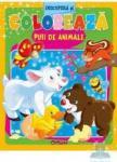 Descopera si coloreaza puii de animale (ISBN: 9786065080812)