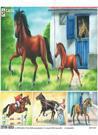 Plansa Calul/Vaca (ISBN: 9789737142054)