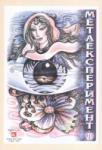 Метаексперимент (2005)