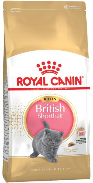 v s rl s royal canin kitten british shorthair 2x10kg macskaeledel rak sszehasonl t sa kitten. Black Bedroom Furniture Sets. Home Design Ideas
