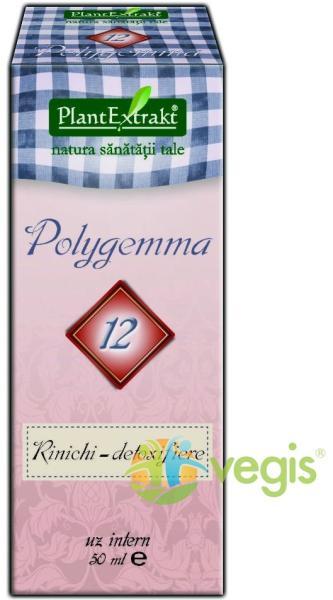 polygemma rinichi