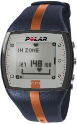 Polar FT4M